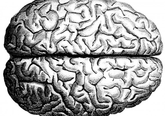 Music & the Brain – A three part blog series